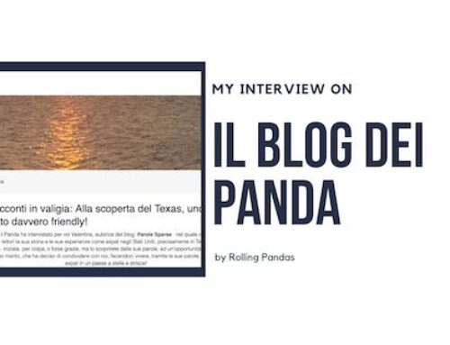 Rolling Pandas: Il blog dei panda – Interview
