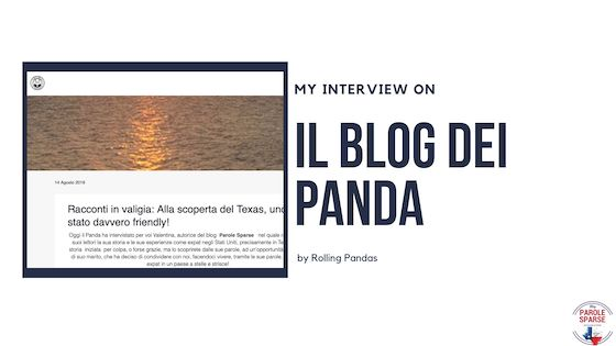 Interview by Rolling Pandas