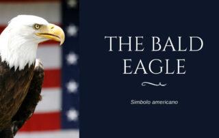 aquila simbolo americano